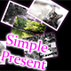 SimplePresent - ActiveDen Item for Sale