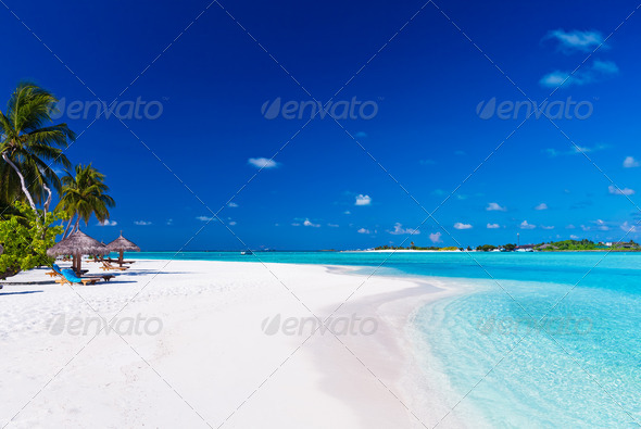 Palm trees over lagoon and white sandy beach - Stock Photo - Images
