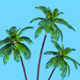 Low Poly Palm tree - 3DOcean Item for Sale