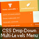 Responsive Multi-Levels/Drop-Down Icon Menu - CodeCanyon Item for Sale