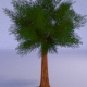 Lowpoly Tree 3 Seasons - 3DOcean Item for Sale