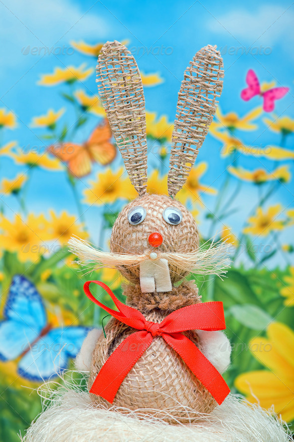 Bunny easter - Stock Photo - Images