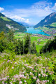 Lungern village in Switzerland  - PhotoDune Item for Sale