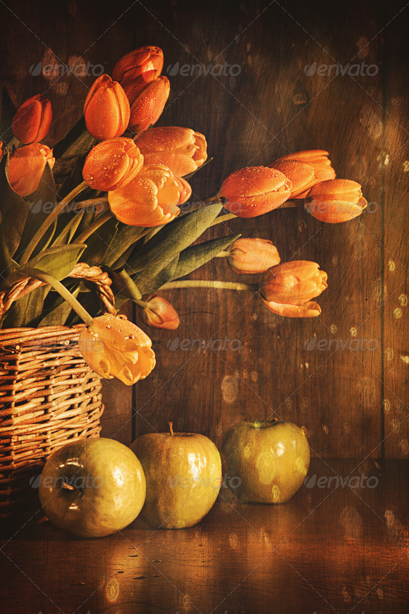 Spring tulips and with vintage feeling - Stock Photo - Images