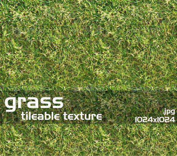 Grass Texture 1 - 3DOcean Item for Sale