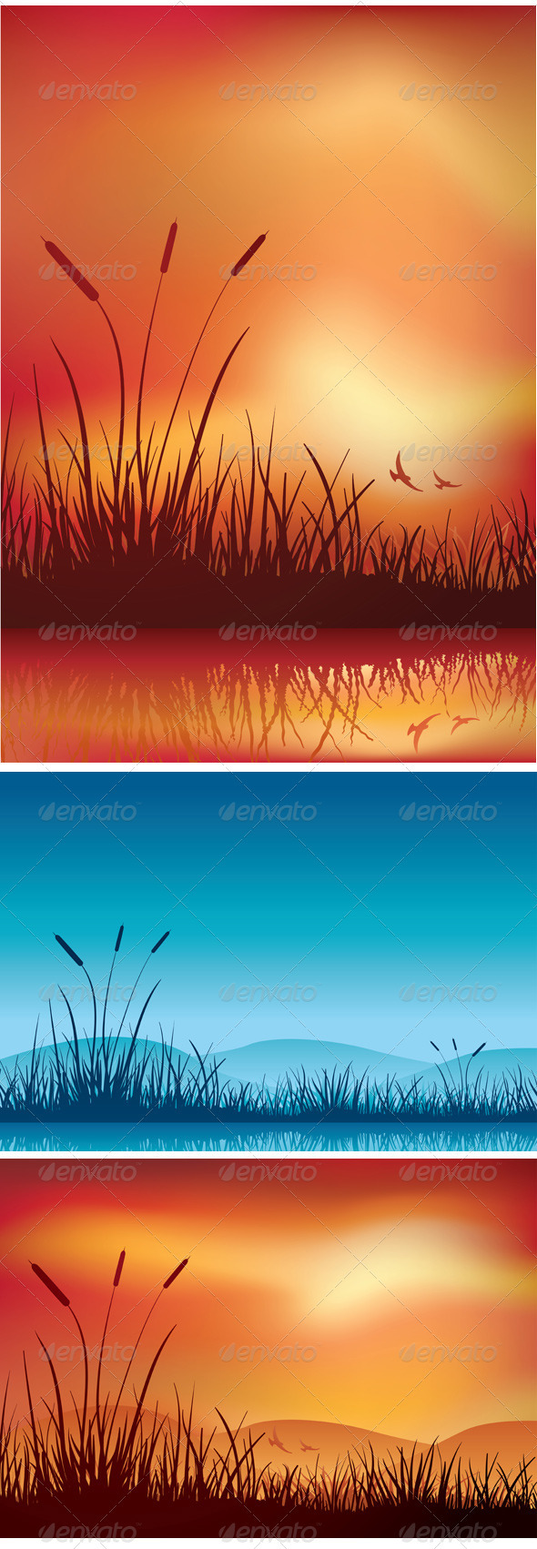 Sunset and Night in Marshland - Landscapes Nature