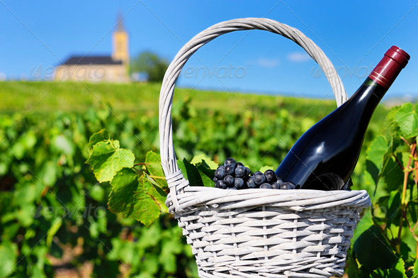 bottle of red wine in countryside - Stock Photo - Images