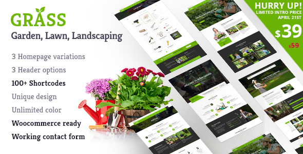 Grass – A Theme for Gardening & Landscaping Services