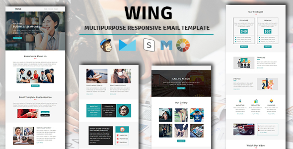 WING – Multipurpose Responsive Email Template with Stampready Builder Access