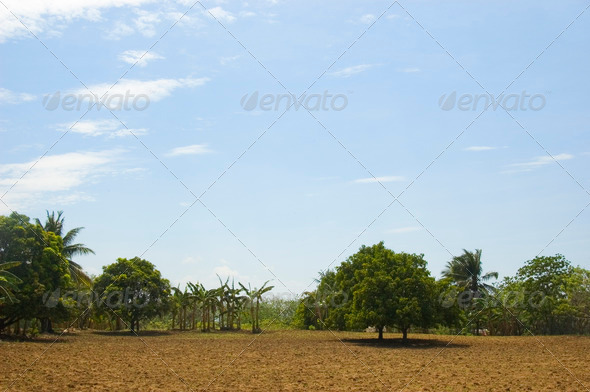 Newly tilled soil - Stock Photo - Images
