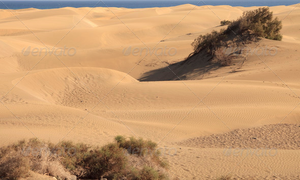 Huge dunes - Stock Photo - Images