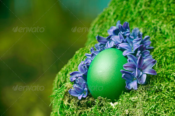 Beautiful green Easter egg - Stock Photo - Images