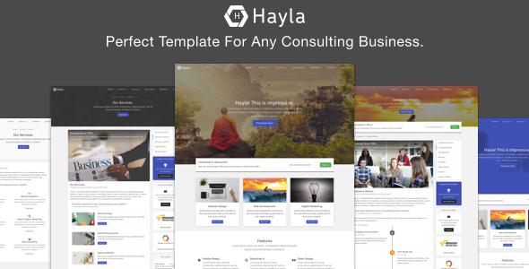 Hayla – Consulting Business Website Temlate
