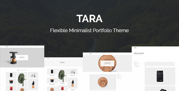 Tara – Flexible Minimalist Portfolio Theme