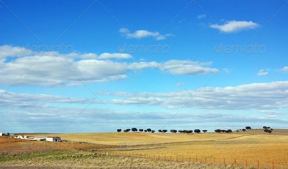 Landscape of alentejo farm - Stock Photo - Images