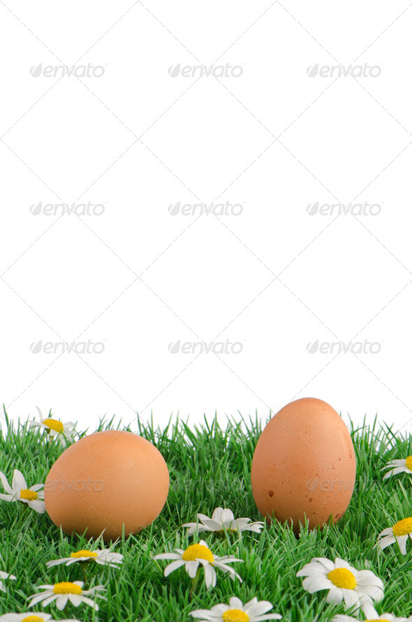 Two eggs with artificial grass - Stock Photo - Images