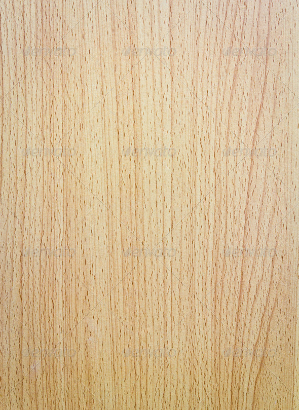 Pattern of the wood - Stock Photo - Images