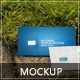 Natural Business Card Mockup 1 - GraphicRiver Item for Sale