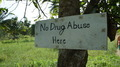 No Drug Abuse - PhotoDune Item for Sale
