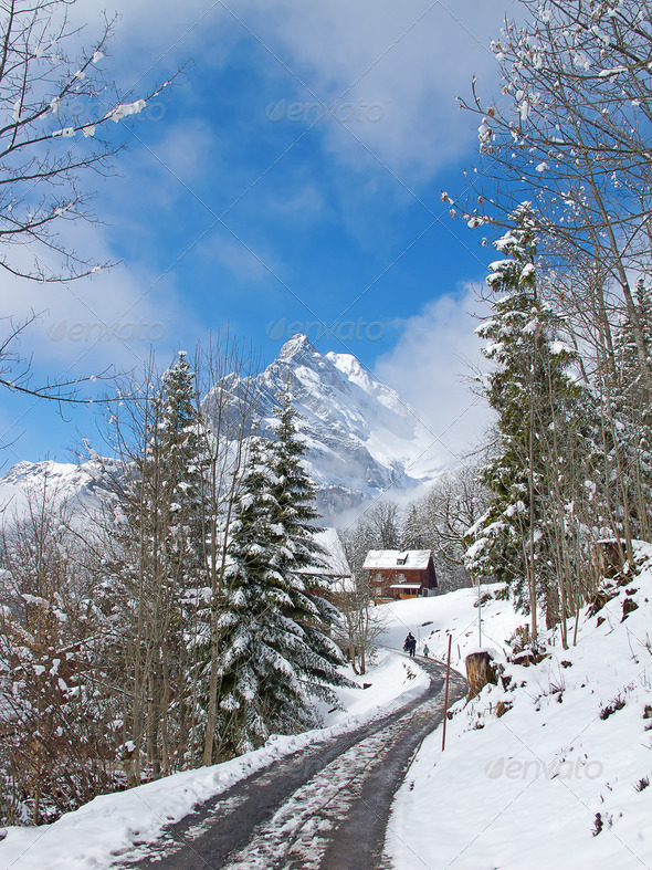 Winter in alps - Stock Photo - Images