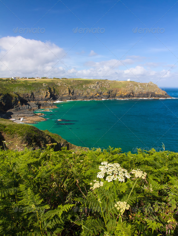 Coastline at The Lizard, Cornwall, England - Stock Photo - Images
