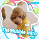 The Bubble Intro - VideoHive Item for Sale