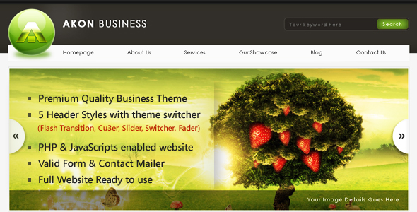 Akon Business Theme