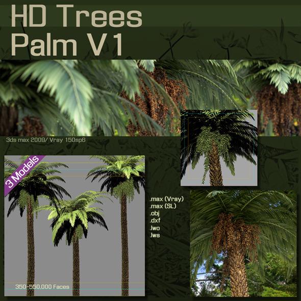 3DOcean HD Trees Palm V1 2089648