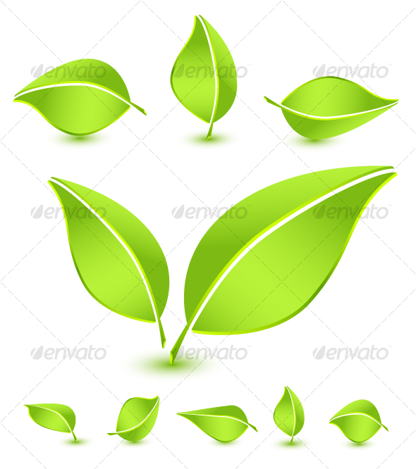 Leaves icon set - Flowers & Plants Nature