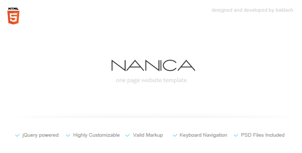 NANICA - One Page Portfolio Template - Screenshot 1. Preview image.