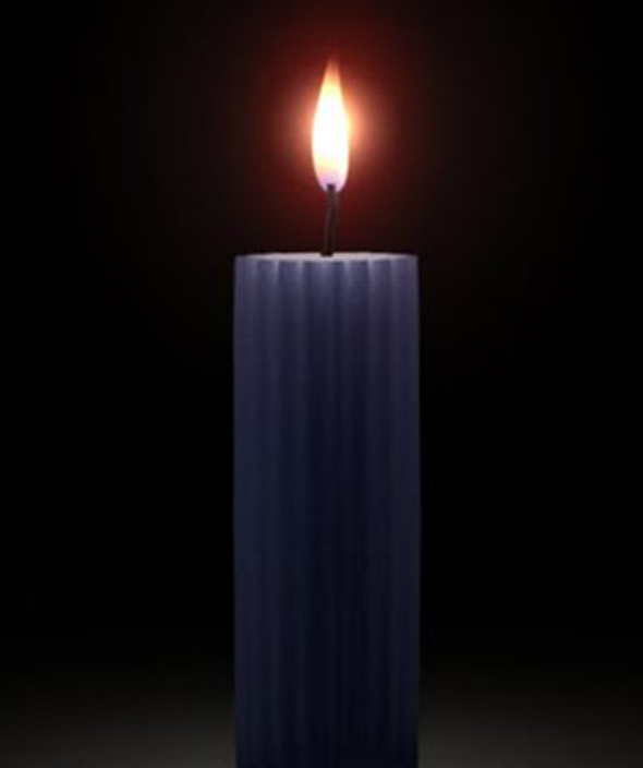 Realistic Wax Shader and 3D Candle Model - 3DOcean Item for Sale