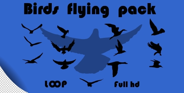 Birds Flying Pack VideoHive Motion Graphic Elements  Nature 2127868