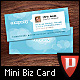 Mini Designer Business Cards - Twitter Style - GraphicRiver Item for Sale