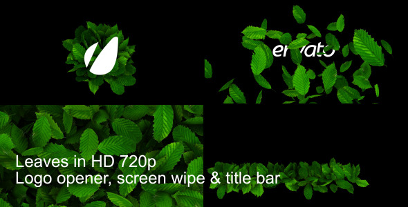 After Effects Project - VideoHive Leaves Logo Wipe And Titlebar HD 2160535
