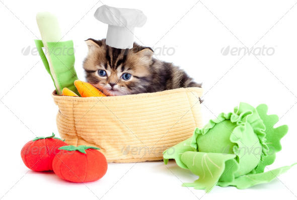 smiling cook kitten with toy vegetables isolated - Stock Photo - Images