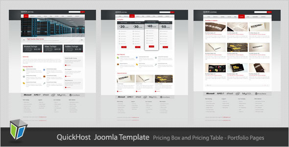 Quick Host - Business and Hosting Joomla Template - Hosting Technology