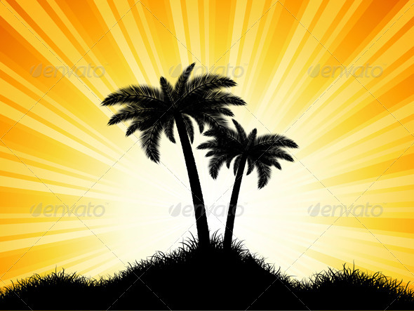 Palm Tree Background - Landscapes Nature