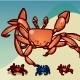 Crab walking - ActiveDen Item for Sale