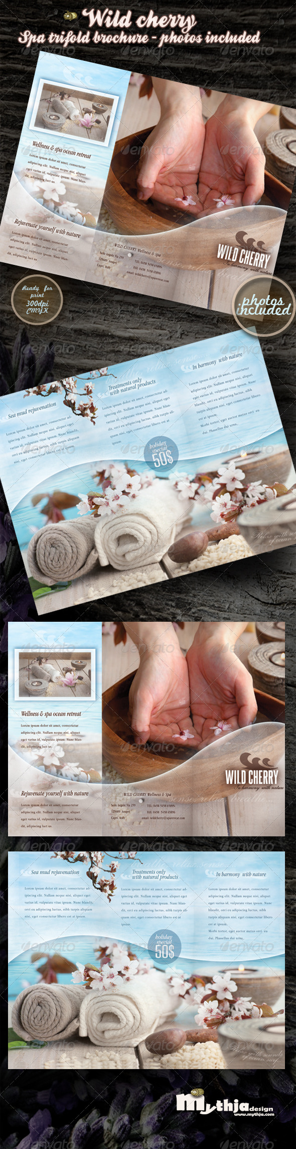 Wild cherry - spa & wellness trifold brochure - Corporate Brochures
