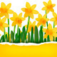 Yellow Flower Background with Ripped Paper - GraphicRiver Item for Sale
