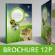Sustainable Report / Brochure - GraphicRiver Item for Sale