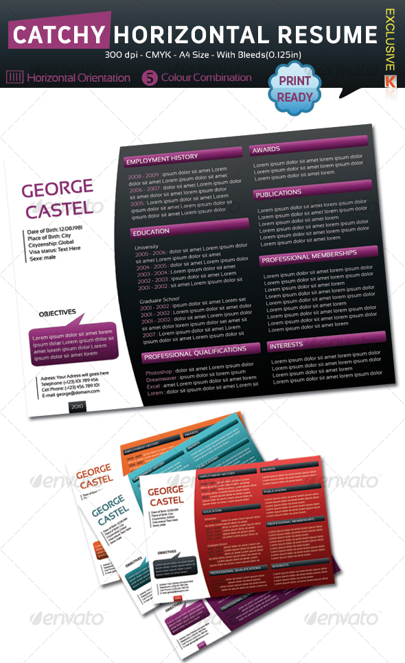 Catchy Horizontal Resume - Resumes Stationery