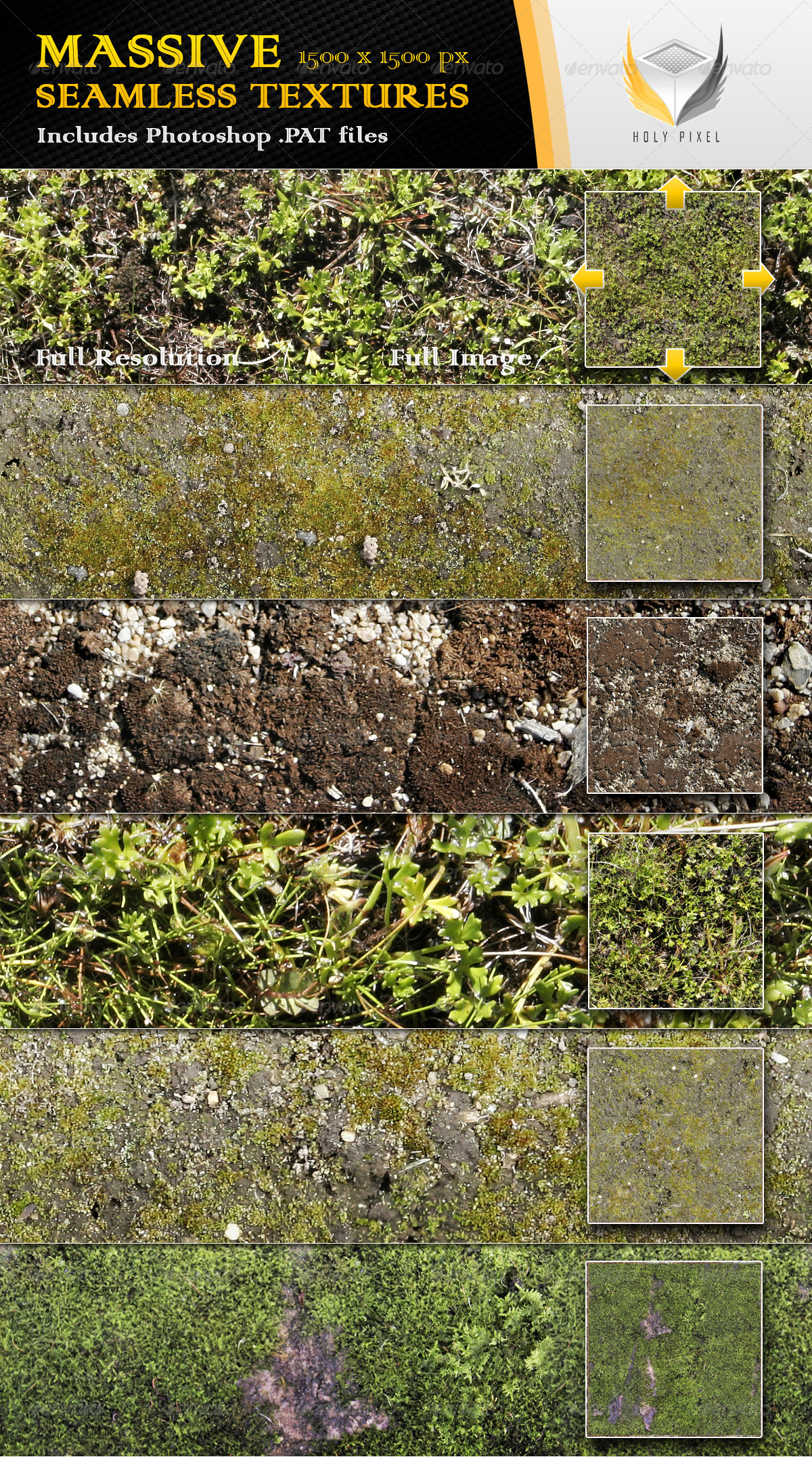 6 Seamless Moss Textures - Nature Textures / Fills / Patterns