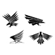 Black Tribal Isolated Wings Icons Or Tattoos