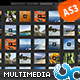 Portfolio Multi Media Tab Gallery with Admin AS3 - ActiveDen Item for Sale
