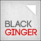 Black Ginger - ThemeForest Item for Sale