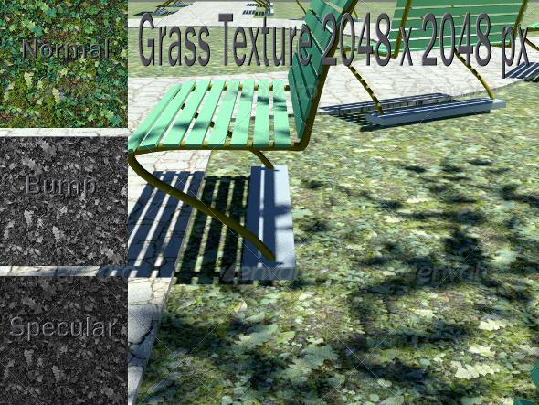 3DOcean Grass Texture CG Textures -  Ground 2289802