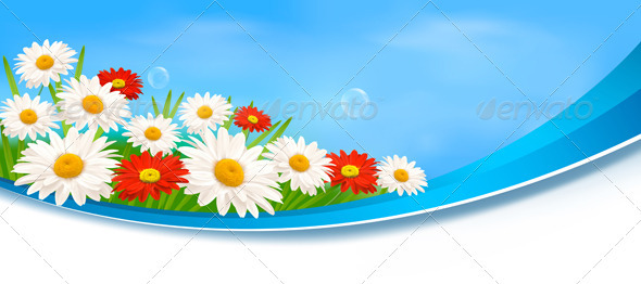 Nature Banners with Red Flowers and Daisies  - Flowers & Plants Nature