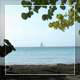 Yacht On The Horizon - VideoHive Item for Sale