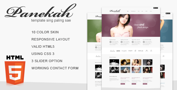 Panekah - A Responsive HTML Corporate Template